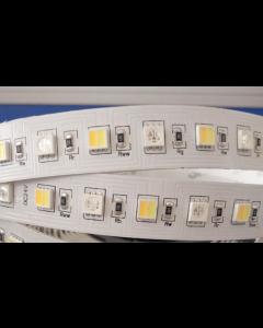 24V 5 meters 360 LED RGB+WW+PW+CW 5050 adjustable color temperature strip