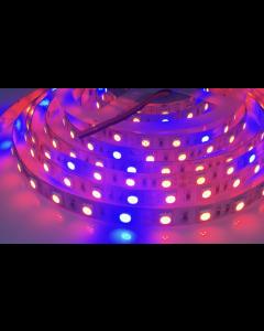 5 meters 300 LEDs IP20 non-waterproof full spectrum phyto plant grow 5050 lamp light strip